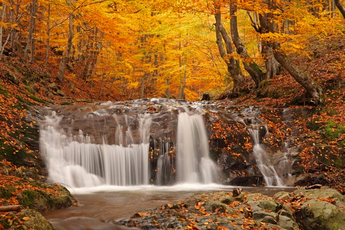 440 Autumn Waterfall.jpg